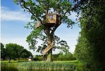Baumhäuser / Wir haben euch eine Menger schöner und kurioser Baumäuser zum Ansehen und Staunen ausgesucht. Inspiriert von www.tiny-houses.de. / by Immonet