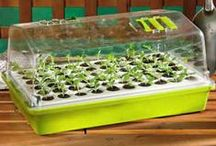 Bio Dome Seed Starting / Growing bigger and better-rooted seedlings faster has never been easier or more economical! Park's Bio Dome Seed Starter germinates all seeds reliably with its unique climate controlled atmosphere, adequate air flow, and deep planting cells. Everything you need is included in this easy to use kit that's perfect for serious seed-starting or a fun science project for the entire family. / by Park Seed