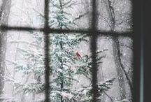 *winter*