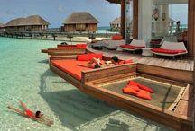 Dream vacations  / by Amanda Behrens