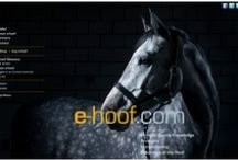 e-hoof.com: dedicatet to the horse and and the hoof / e-hoof.com is a new interactive web platform and e-learning tool dedicated to the horse and the hoof (Language: English and Deutsch)