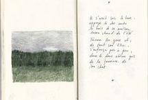 books/ilustrations/drawings