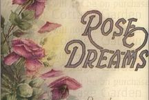 ~~ ☆★ Rose Dreams ~~☆★ / Welcome to Rose Dreams , we all Love roses... Here is a place to pin all your favorite finds from rose gardens to teacups , curtains ,vases anything roses. As always please use high quality pins . Happy pinning everyone and thanks for joining me here !