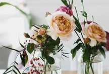 Flowers and Floral / Pretty Petals and Beautiful Blooms