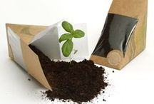 Rustic Eco-Packaging / Eco packaging and labelling