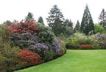 Outside / Ideas for the outside of your home as well as landscaping and gardening