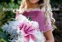Bruidswerk met anthuriums / Bij de mooiste dag van je leven kan natuurlijk geen bruidsboeket missen. Kies voor een mooi bruidsboeket met anthuriums!