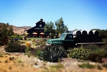 Central Coast Wine Country / Explore the Central Coast wine-friendly lifestyle of Santa Maria Valley, Santa Ynez Valley, Sta. Rita Hills, and Happy Canyon Los Olivos and Ballard Canyon.
