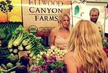 Santa Barbara Fresh Foods / The freshest of fresh ingredients, found locally in Santa Barbara (and just beyond) - please eat local!