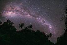 star gazing / by Madeline Dillard