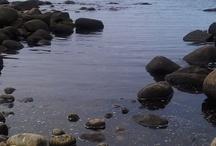 Norwegian nature on the rocks