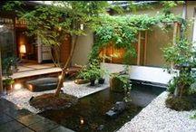 Jardin zen / by Isabelle Riou