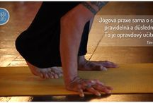 Pondělní YogaGuru mudrování / Každé pondělí YogaGuru mudruje na Facebooku :)