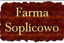 Farma Soplicowo / www.farmasoplicowo.pl Farma Soplicowo,to miejsce,dom,tutaj mieszkam,dobrze się czuję,czytam i pracuję.Jest to miejsce specyficzne,ulubione i wspaniałe,każdy ma takie miejsce,a jeśli jeszcze nie ma ,to marzy o takim.
