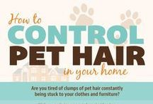 Pet Health Tips and Information / Pet health tips, grooming, medications, infographics, pet training and more.