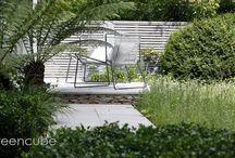 Modern Meadow Garden