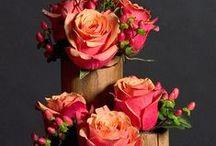 Kwiaty, bouquets / flowers, Kwiaty, bouquets