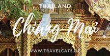Thailand Reise / Hier findet ihr Tipps für eure Reise in den Norden Thailands und so kann eure Reiseroute aussehen: Bangkok ✈ Ayutthaya ✈ Sukhothai ✈ Chiang Mai