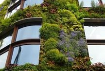 Garden Green Roofs / Use of green roofs for conservation and saving the environment