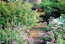 Garden Cottage Garden / Inspiration for creating an English style cottage garden and how to do it.
