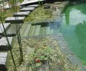 Garden Ponds & Waterfalls / Inspiration posts showing how to's for garden ponds, waterfalls and natural swimming or plunge pools
