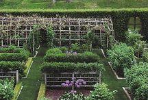 garden ↟ potager / Potager garden, kitchen garden, edible garden, edible landscape, herb garden, flower garden, vegetable garden, formal garden / by This Natural Dream