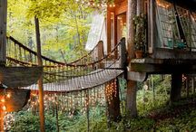 nest ↟ treehouses / Treehouse, houses in trees, architecture in trees, biophilic design, tree house, sustainable design