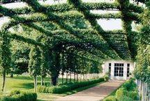 garden ↟ structures / Gardening structures, pergola, gazebo, trellis, garden arbor, garden gate