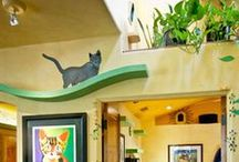 Cat Play Spaces / Creative ideas for indoor play spaces for cats with emphasis on cat walkways