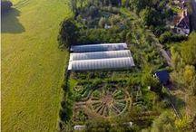 homestead ↟ permaculture / homestead, permaculture, organic farm, farming, gardening, food forest, swales, hugelkultur