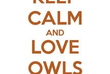 Owls / All kinds of cute owls everywhere!! / by Tricia Van