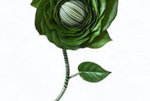 bukiety florystyka