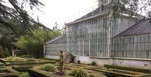 WEDDING - Copper Botanical