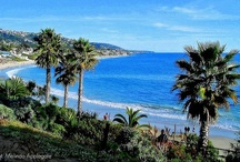 California / by Kahea McCollum