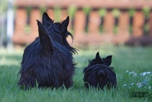 ScOttIES,,,,I LoVe and MiSs yOu botH!!! / by Cyndi Parkinson