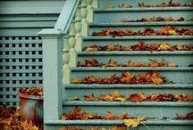 autumn inspiration...