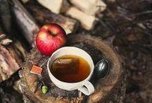Autumn | Picnics / Autumn Tailgating, Picnics and Outdoor Gatherings / by Bluebird CSA.com