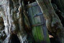 Doors / Doorways & Entrances