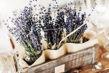 Lavender Wedding Ideas and Colors