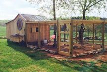 Wickiup Homestead Projects