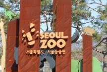 Zoos & Wild Life Areas I have seen