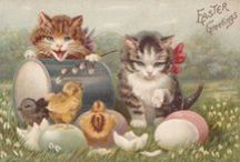 Easter Cats / Easter cats & kittens / by dachweiler