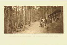 Wesserling 1915 / Première Guerre Mondiale