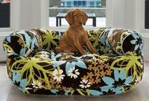design pet furniture / Join Us Now! Share state of the art, design, retro and cool pet furniture ideas.