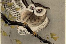 Ohara Koson (1877-1945) / Fiori e animali prendono forma, colore e vita in opere senza tempo
