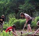 Frühling / Jahreskreis, mit Kindern die Jahreszeiten erleben, Leben mit Kindern, Frühjahr, Frühling, Blumen, Natur, Bäume, Garten, Farbe, Licht