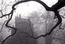Something Wicked This Way.....
