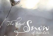 White Winter Wonders