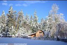 Wintertime on Salt Spring Island