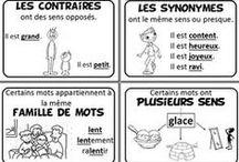 Ecole : Français / Fichiers, évaluations, leçons... piochés sur le net - compétence : maîtrise de la langue française - niveau primaire